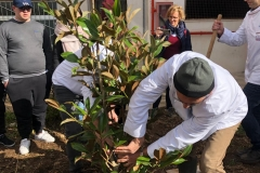 Piantumazione albero di magnolia donato all'Istituto dall'Associazione Cuochi di Capitanata Gargano